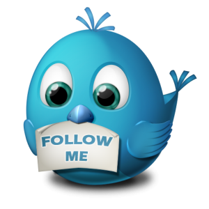 twitter follow me 300x300 7 Reasons We Follow Accounts On Twitter